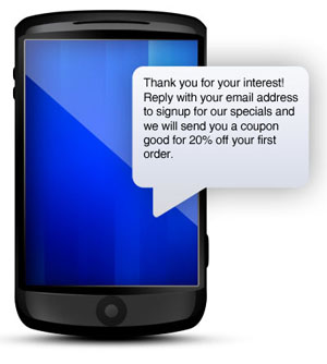 using text messaging to capture email address for opt-in marketing